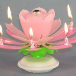 7145-ukras-svijeca-cvijet-pjeva-rodjendan-rozo-sveisvasta
