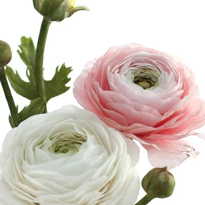 dust-boja-sjencanje-ruza-cvijet-gum-pasta-sveisvasta (2)