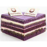 formelo-slasticarski-ring-pecenje-filanje-torta-biskvit-sveisvasta (2)