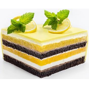 formelo-slasticarski-ring-pecenje-filanje-torta-biskvit-sveisvasta (3)