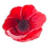 jestiva-dekoracija-cvijet-ukras-zivotinje-mak-sveisvasta (3) - Copy