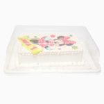kutija-torta-transport-zvono-plasticno-sveisvasta