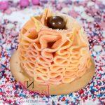 nifty-nozzle-nastavak-dekoriranje-ukrasavanje-cupcake-sveisvasta (2)