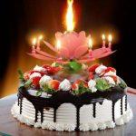 prskalica-fontana-svijeca-cvijet-svira-pjeva-rodjendan-sveisvasta (1)