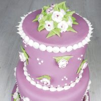 royal-icing-kraljevska-glazura-funcakes-prah-sveisvasta (2)