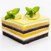 slasticarski.-ring-kalup-torta-formelo-jednaki-slojevi-sveisvasta (4)