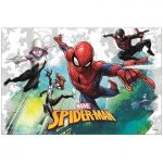 stolnjak-spiderman-rodjendan-zabava-sveisvasta